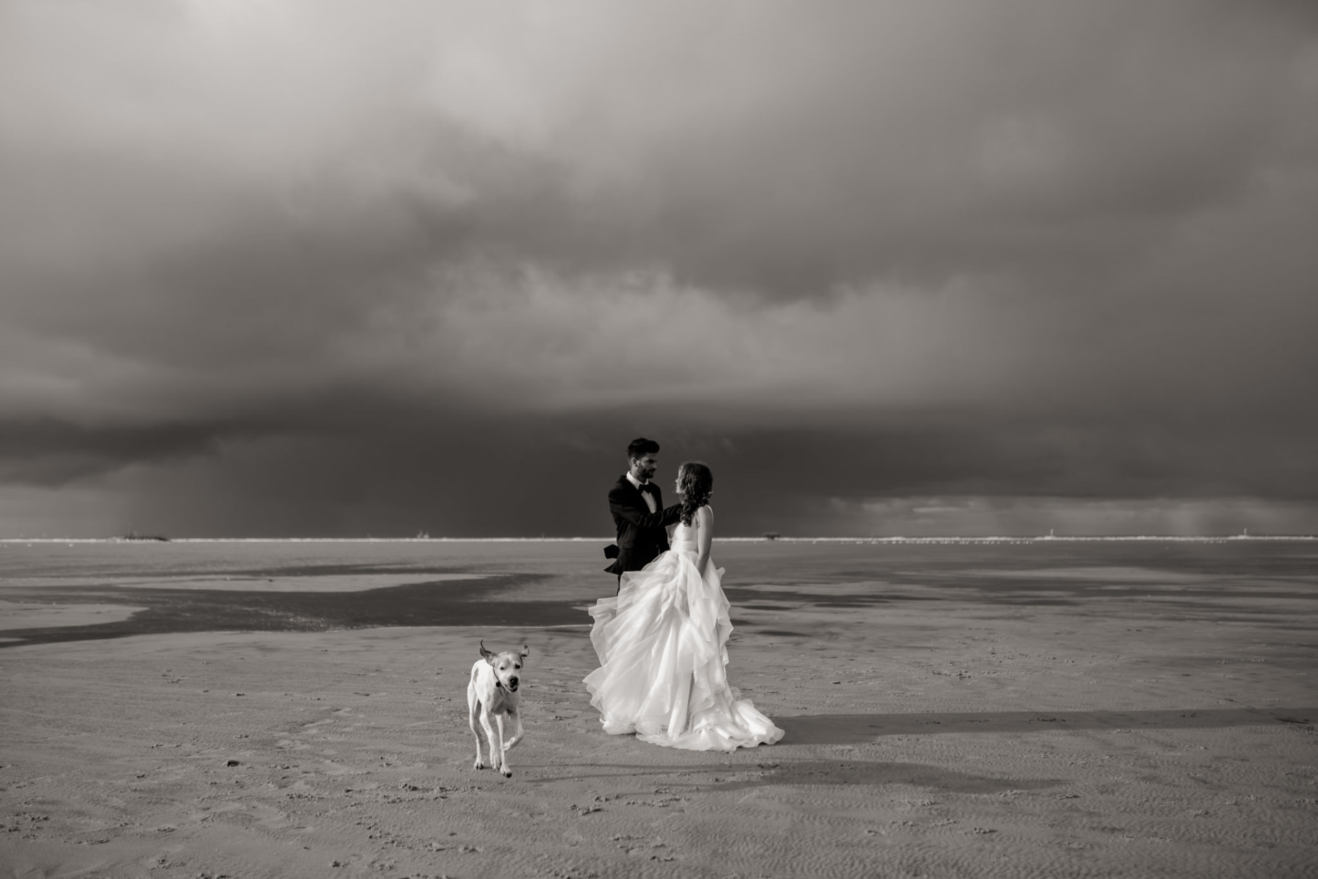 beach wedding sankt peter ording-wedding with dog-beach elopement