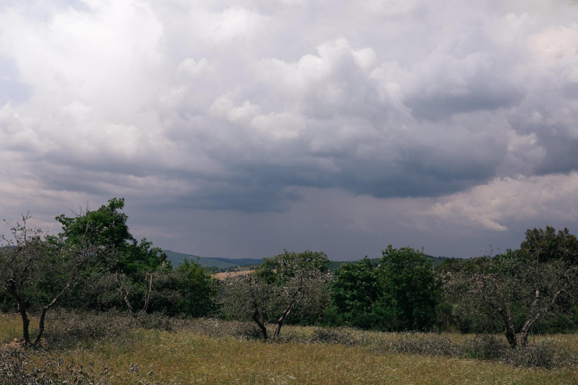 wedding photographer tuscany-italy road trip with dog-chianti region hiking
