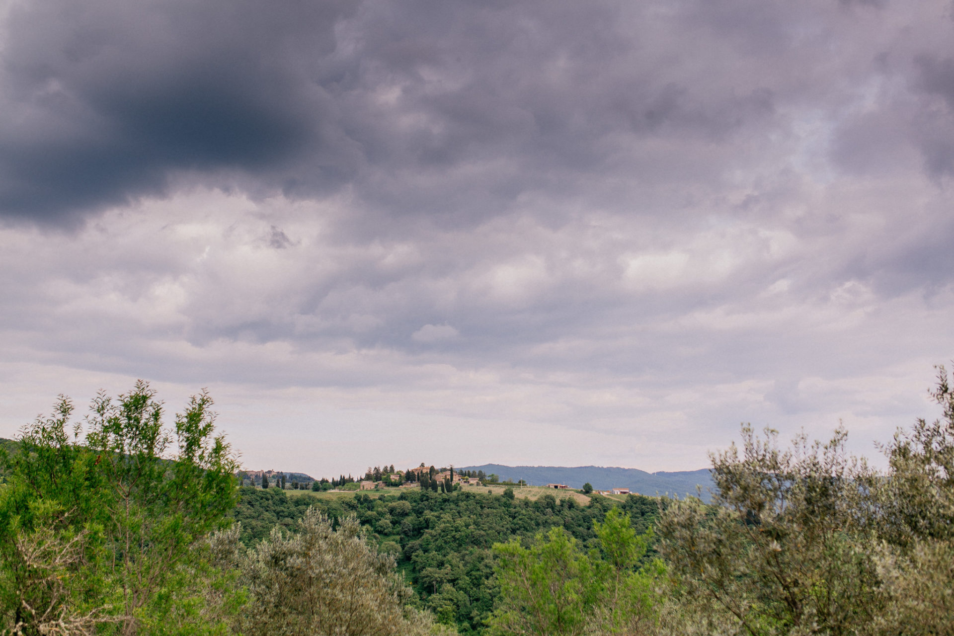 wedding photographer tuscany-italy road trip with dog-chianti region wineries hiking-organic vineyard
