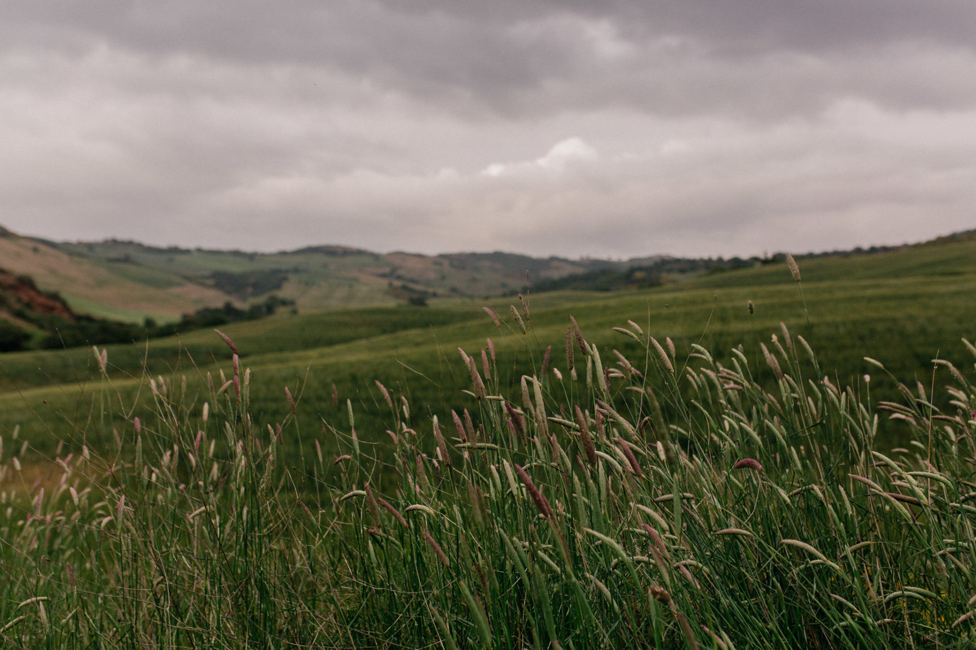wedding photographer tuscany-italy road trip with dog-boutique hotel-exclusive romantic gateway-grosseto region-tuscan hiking tours
