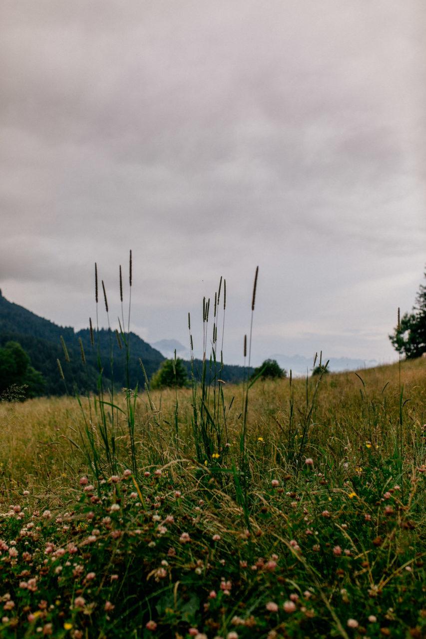 Hochzeitsfotograf Vorarlberg-Hüttenhochzeit