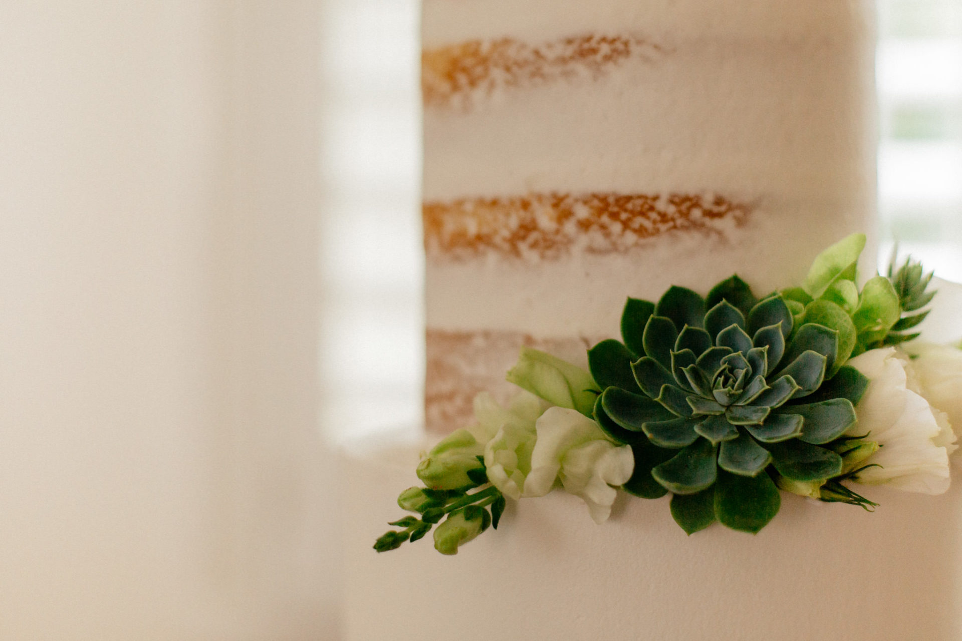 Melbourne Wedding Photographer-Queenscliff DIY garden wedding-wedding cake succulents