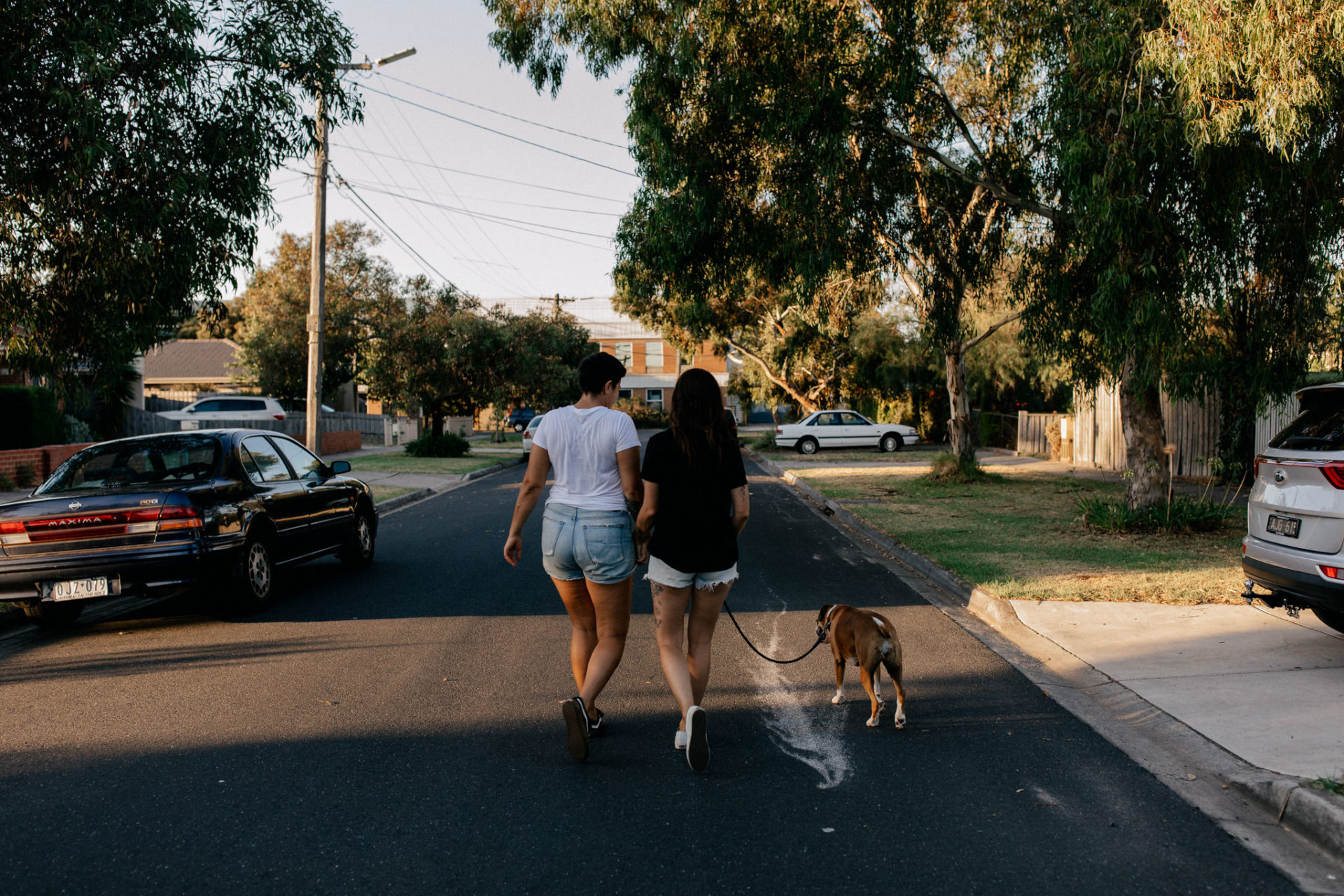 In Love Session Thornbury-engagement photos--couple shoot-lesbian couple with dog-park-melbourne-summernight-walk