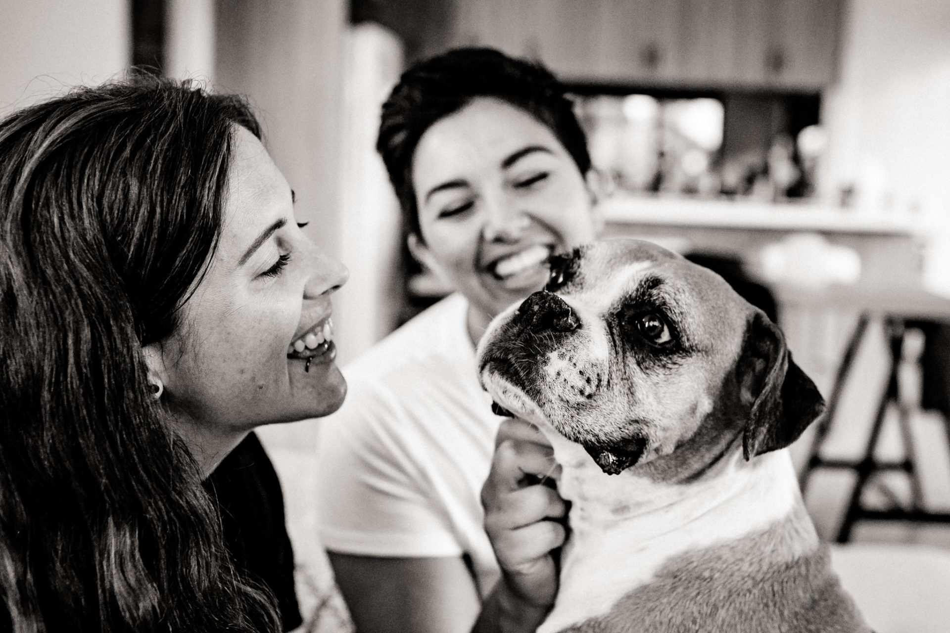 In Love Session Thornbury-engagement photos-home-story-couple shoot-lesbian couple with dog-lgbtq-friendly-wedding-photographer-melbourne