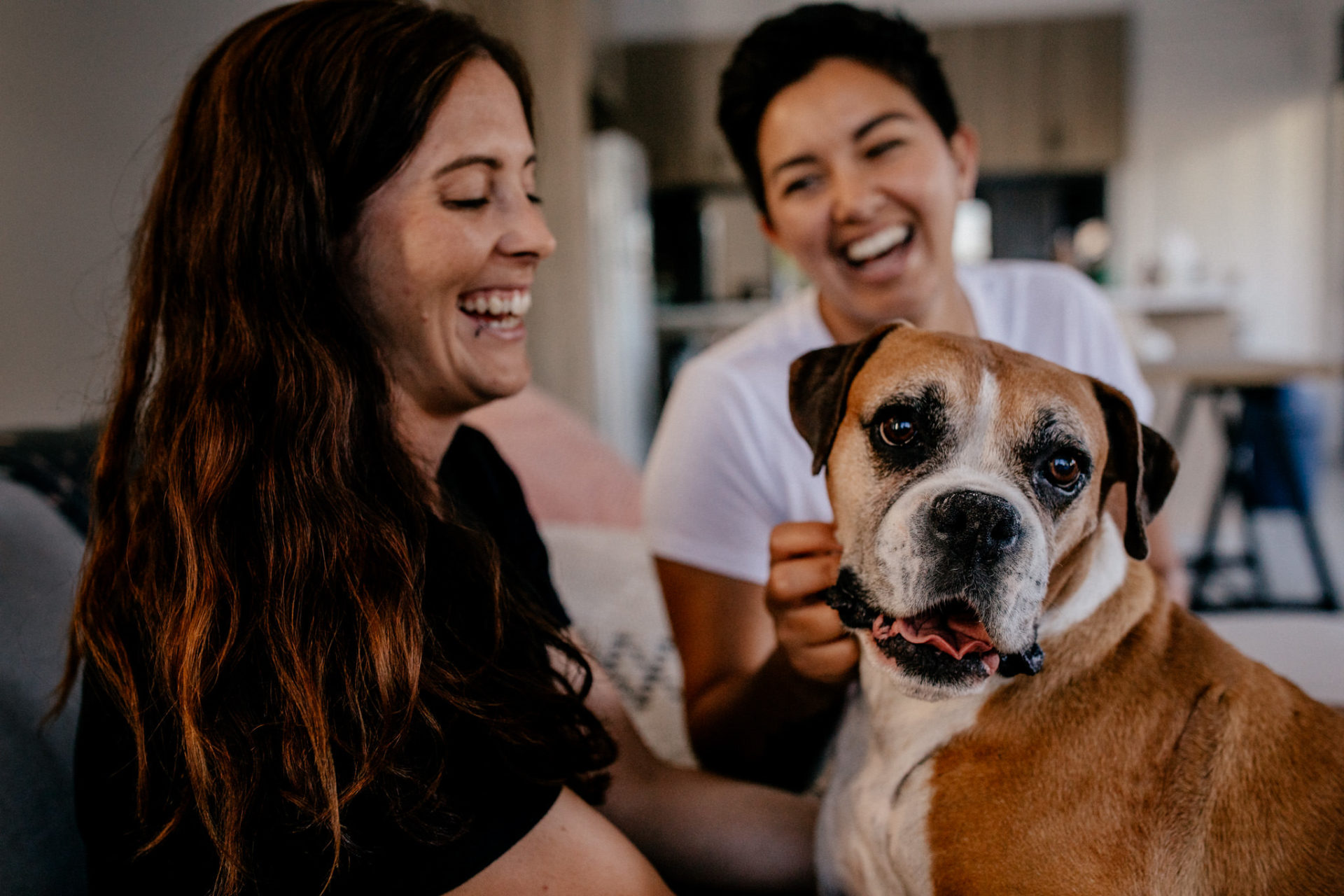 Engagement-photos-Thornbury-lesbian-couple-with-dog-homestory-couple-photos-wedding-photographer